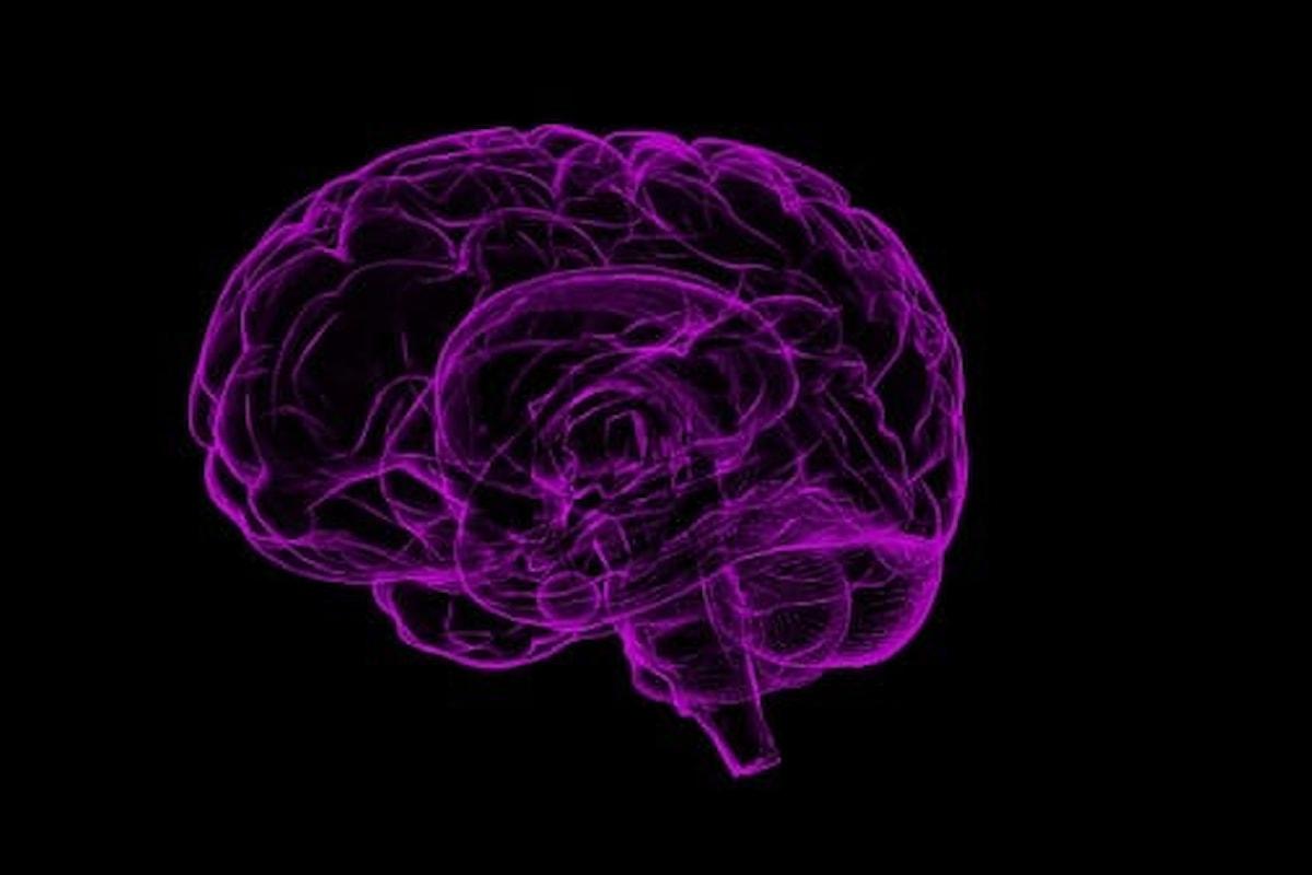 Alzheimer – Scoperta nei topi molecola che blocca la malattia