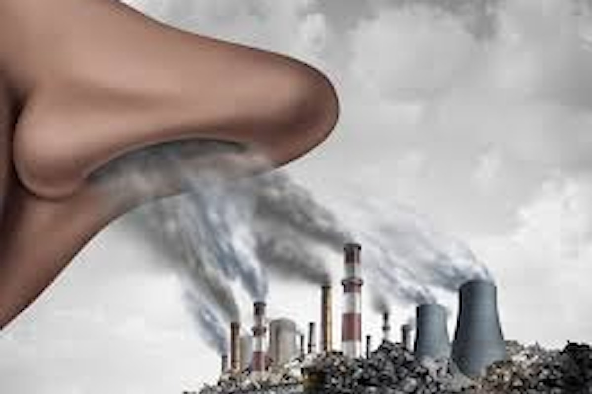 Tra gli inquinanti, il particolato (PM) è particolarmente rilevante, in quanto può contenere ioni metallici tossici che possono raggiungere il cervello attraverso percorsi olfattivi. 2019