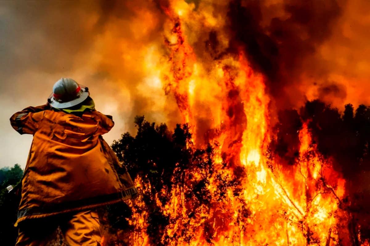 Temperature fino a 46 gradi e incendi fuori controllo, l'Australia è un inferno