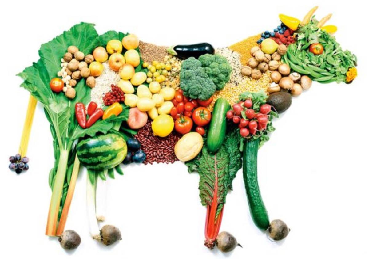 Prevenire le malattie è meglio che curarle: tre buoni motivi per cambiare abitudini alimentari
