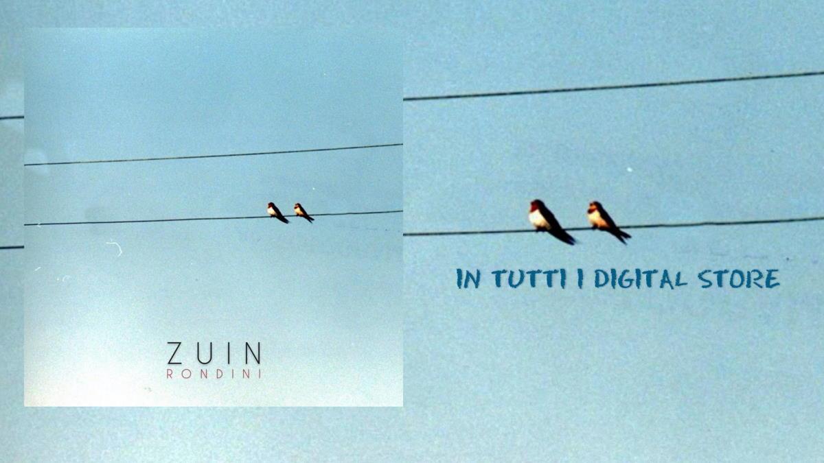 """""""RONDINI"""" è il nuovo singolo in radio e in tutti i digital store di ZUIN"""