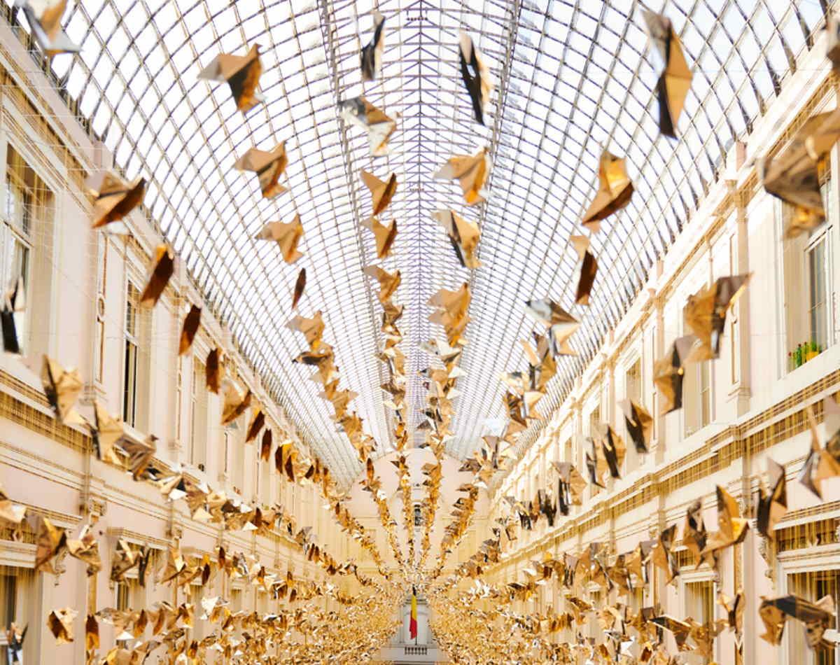 50.000 colombe hanno illuminato il Natale di Bruxelles