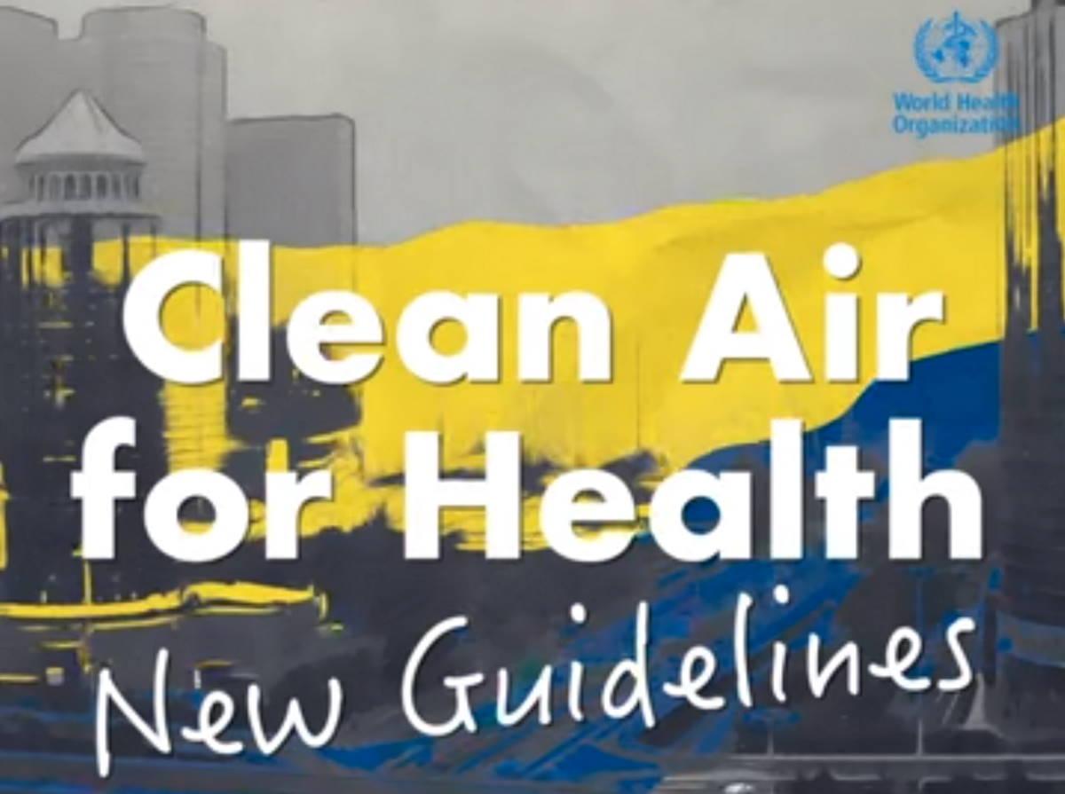 L'organizzazione Mondiale della sanità mette in evidenza i gravi rischi per la salute dovuti all'inquinamento