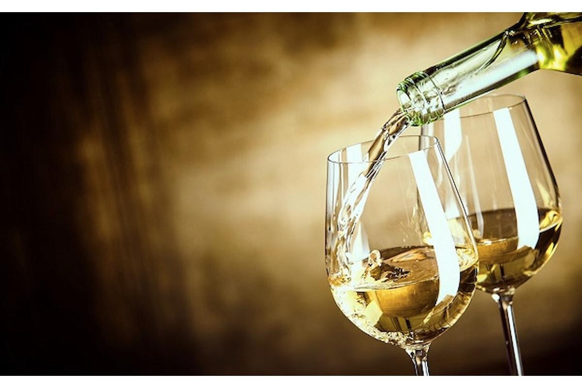 Sinestetica, percorso tra vino, opera d'arte e musica guidato da Antonio Paolini
