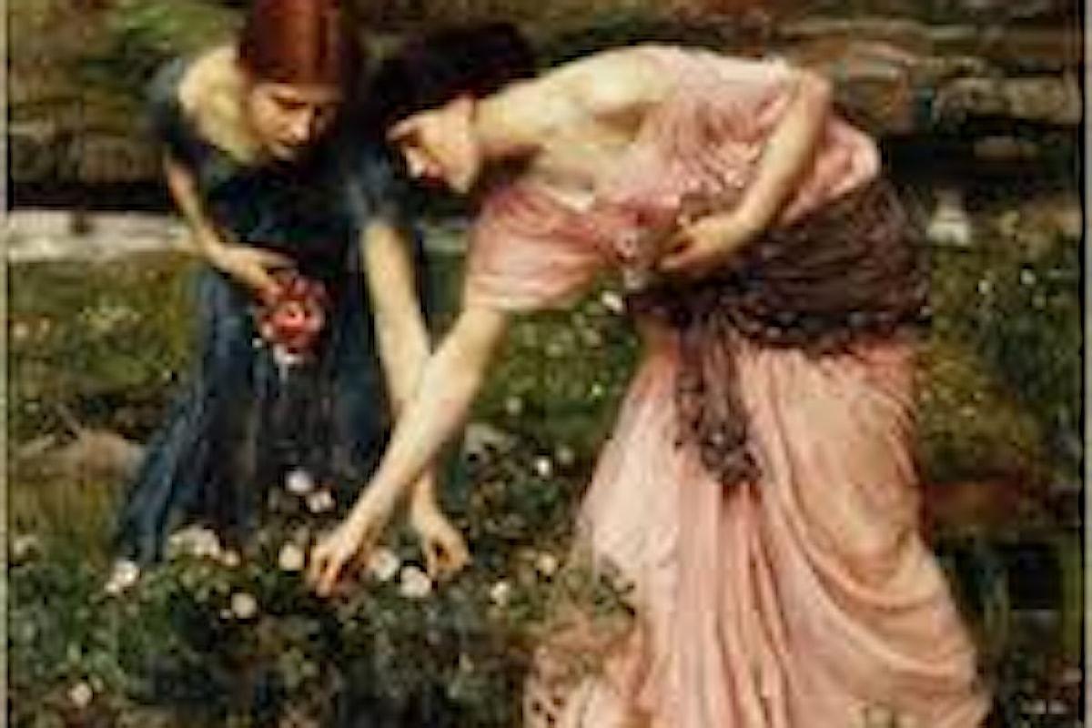 Un fiore misterioso che non è registrato dai botanici: l Fiore di San Giovanni, il re della botanica magica