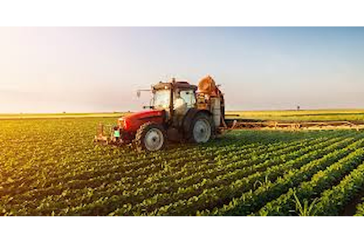 Record di studenti nelle scuole di agraria in Italia