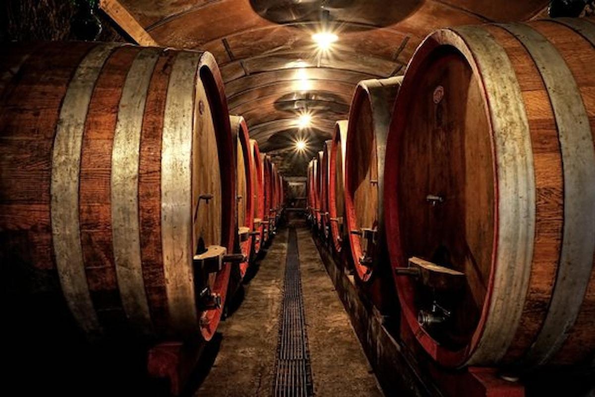 Il millesimo o l'annata, un parametro per valutare il vino
