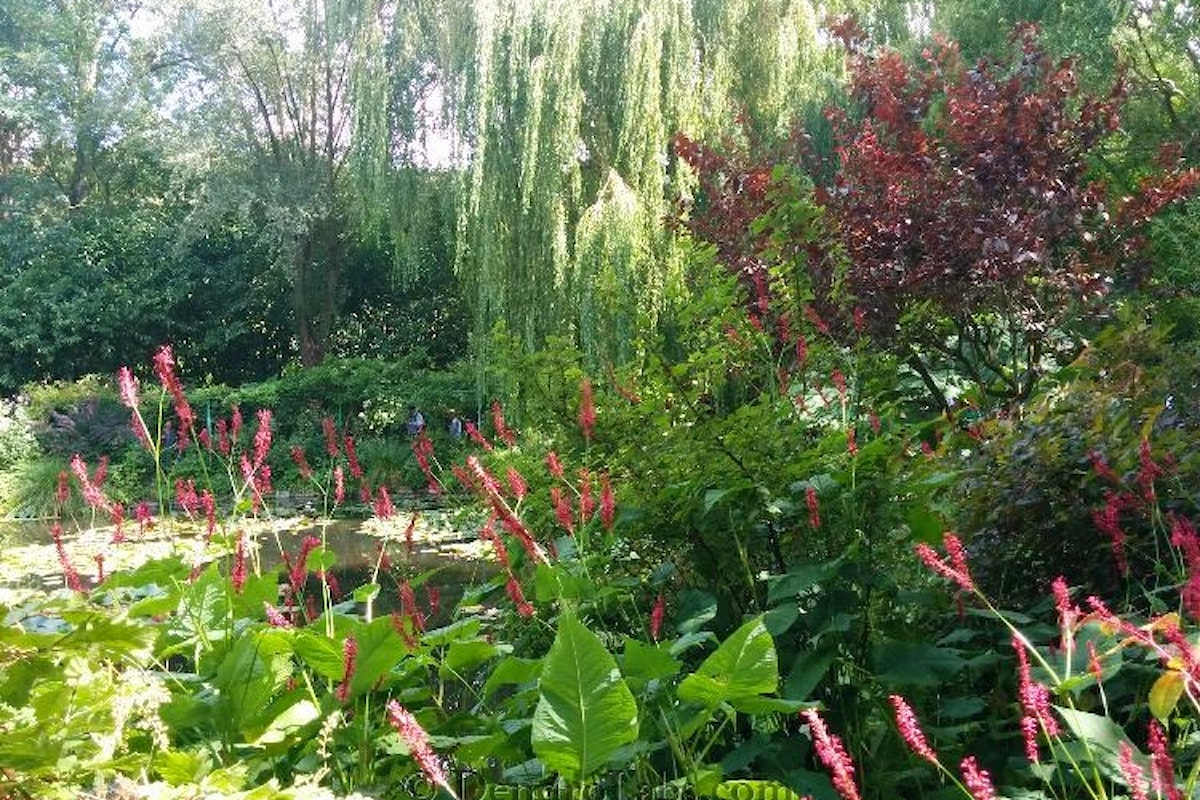 Alla scoperta del giardino di Monet presso la tenuta di Giverny