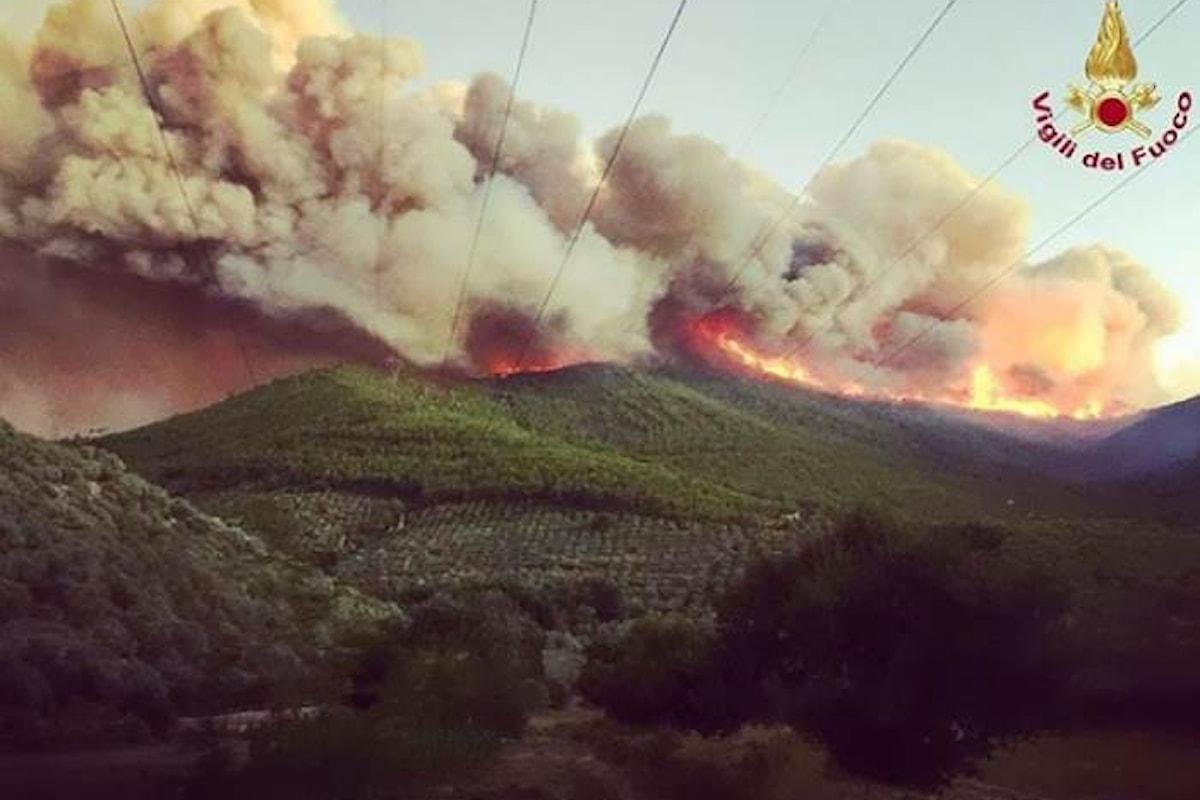 Non ancora domato l'incendio alle pendici del Serra