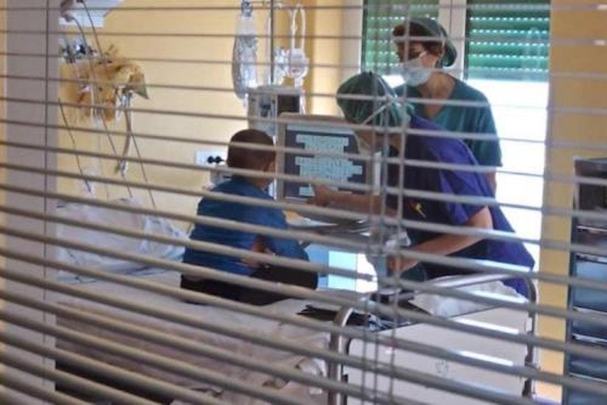 Emergenza tumori infantili nella terra dei fuochi