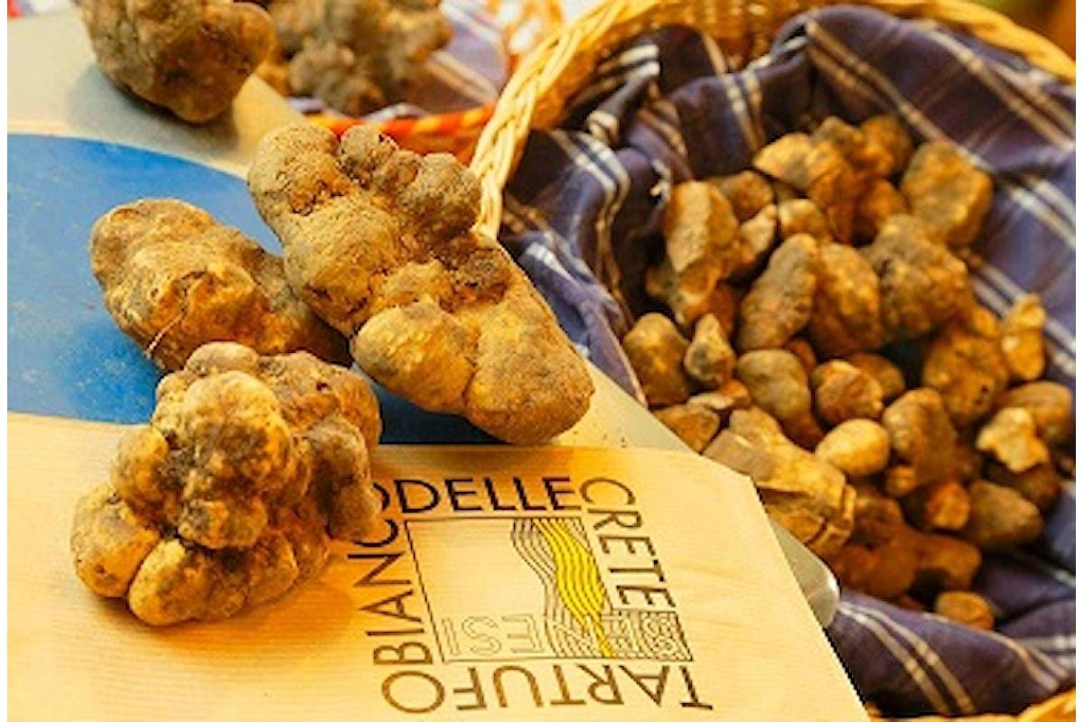 Domani prende il via la XXXI edizione della Mostra Mercato del Tartufo Bianco delle Crete Senesi che come tradizione si svolge a San Giovanni d'Asso.