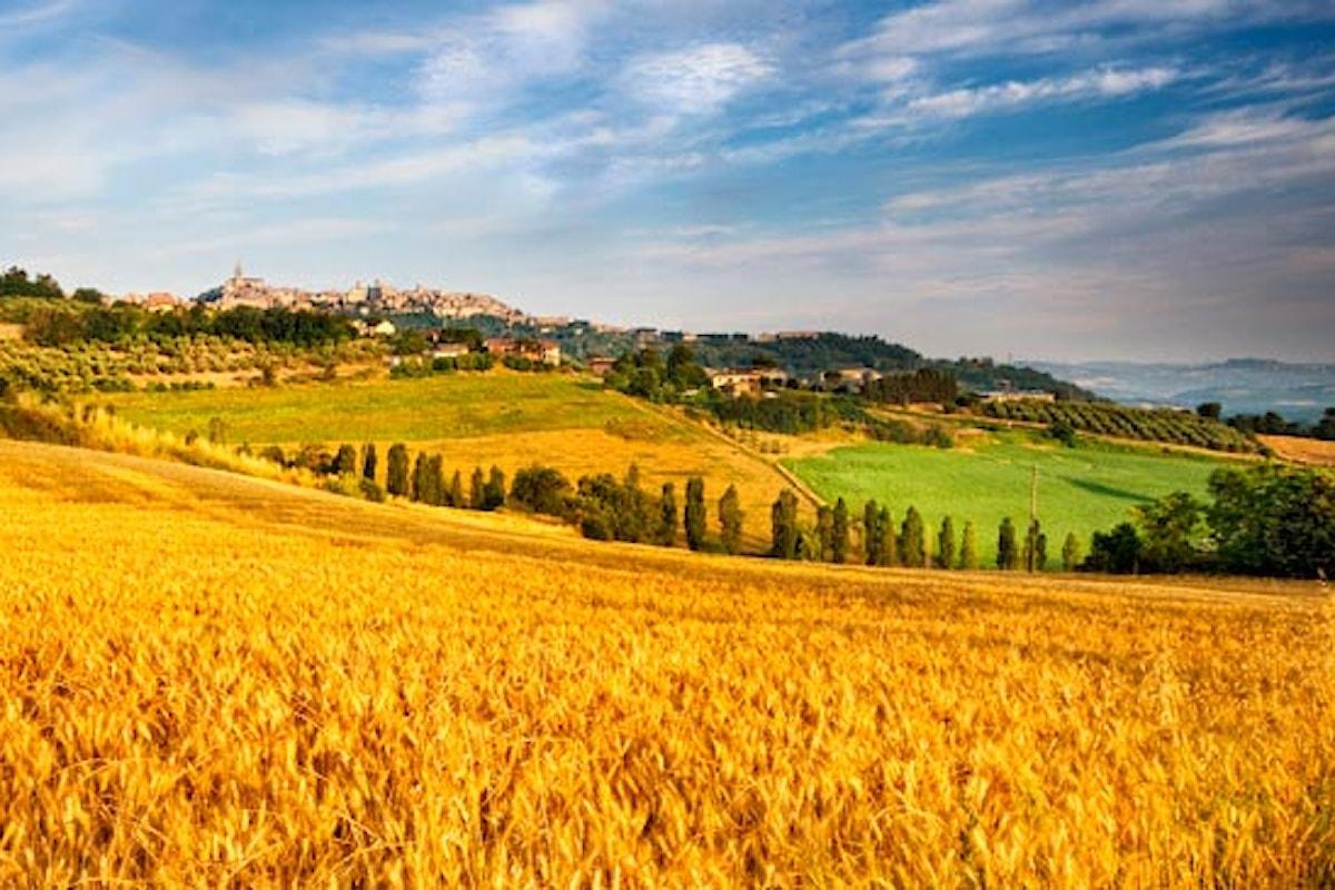 Il sistema agricolo e i pagamenti comunitari