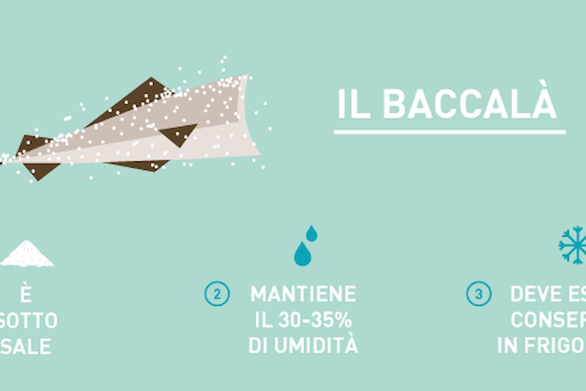 Enciclopedia Del Baccalà: Guida Completa