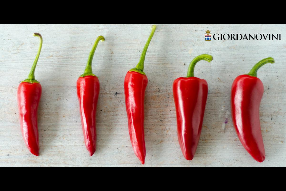 Star bene con gusto: il peperoncino, ingrediente piccante di un'alimentazione sana e focosa!