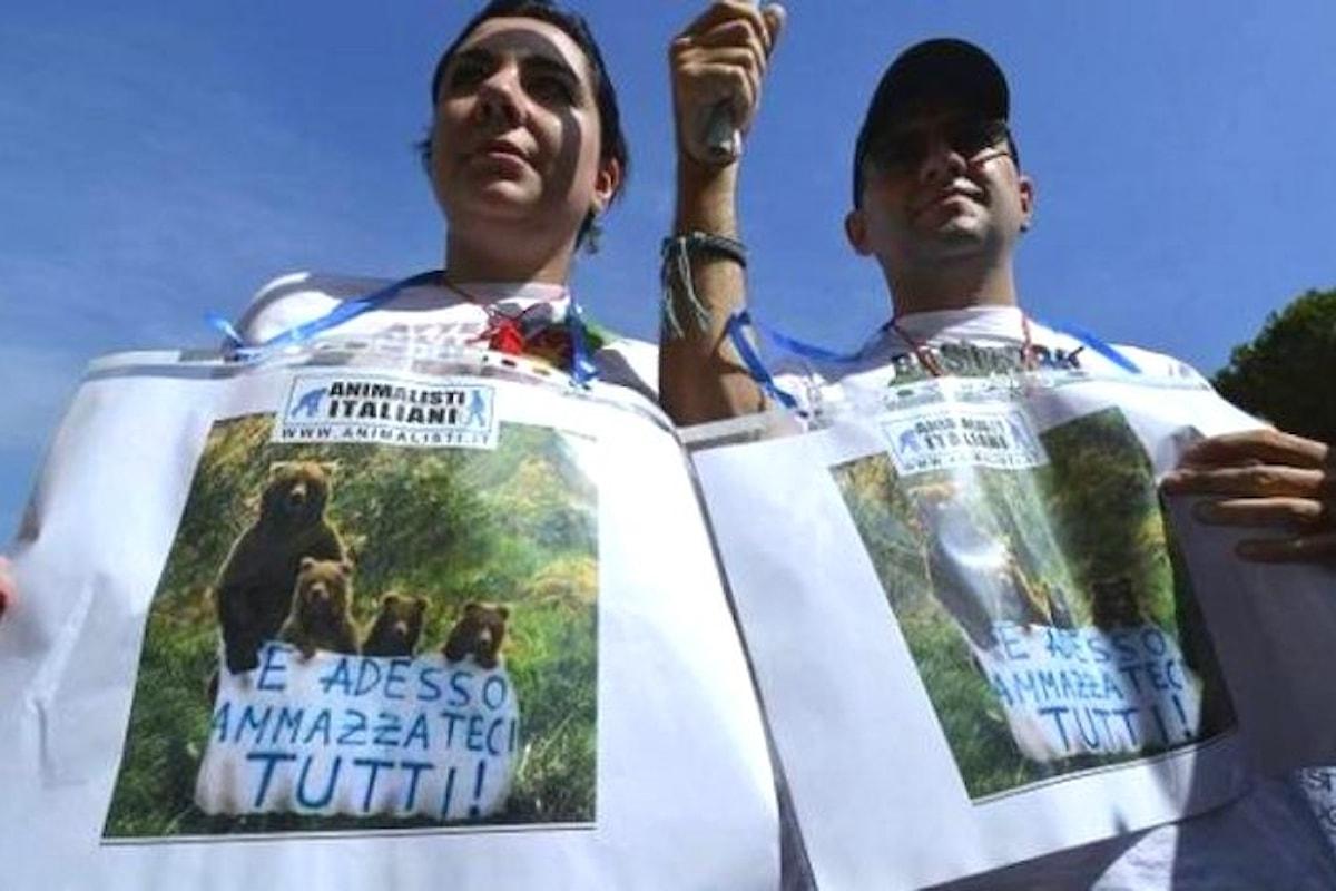 La procura di Trento indagherà sull'uccisione dell'orsa KJ2